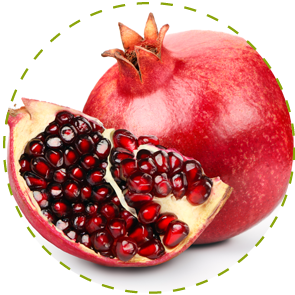 "<a href=""https://www.euromed.es/euromed/pomanox/"">Pomegranate Extract</a>"